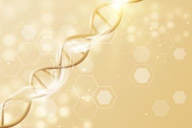 幹細胞治療のイメージ